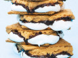 1 Dozen Mouth-Watering S'mores Recipes Your Next Camping Trip Demands