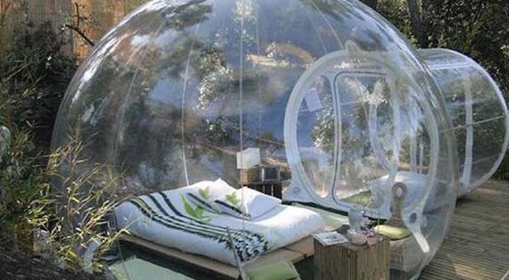 Bubble Tree Tents Has Built The World's Most Extraordinary Room With A View